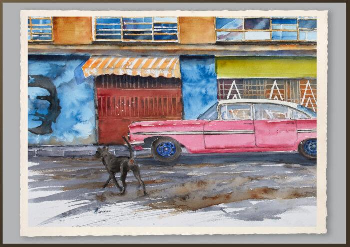 Hunden i Havanna